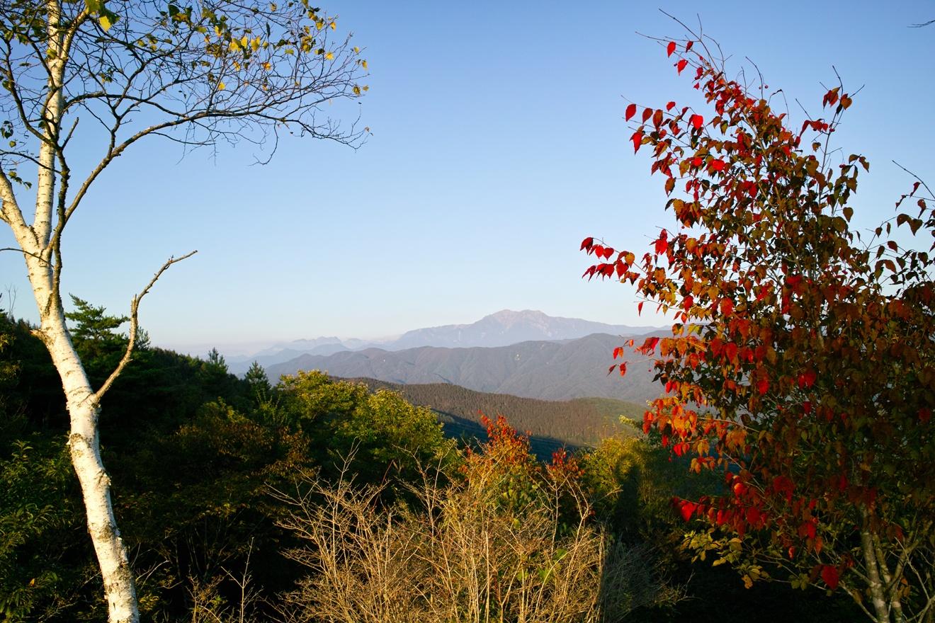 中川村陣馬形山から仙丈ヶ岳を望む