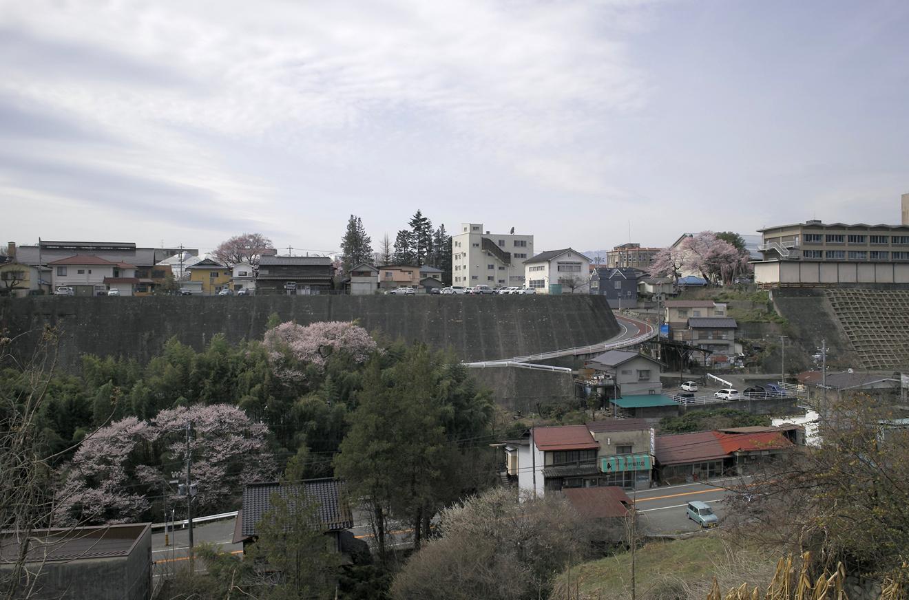 馬場町より飯田城址の名桜を望む