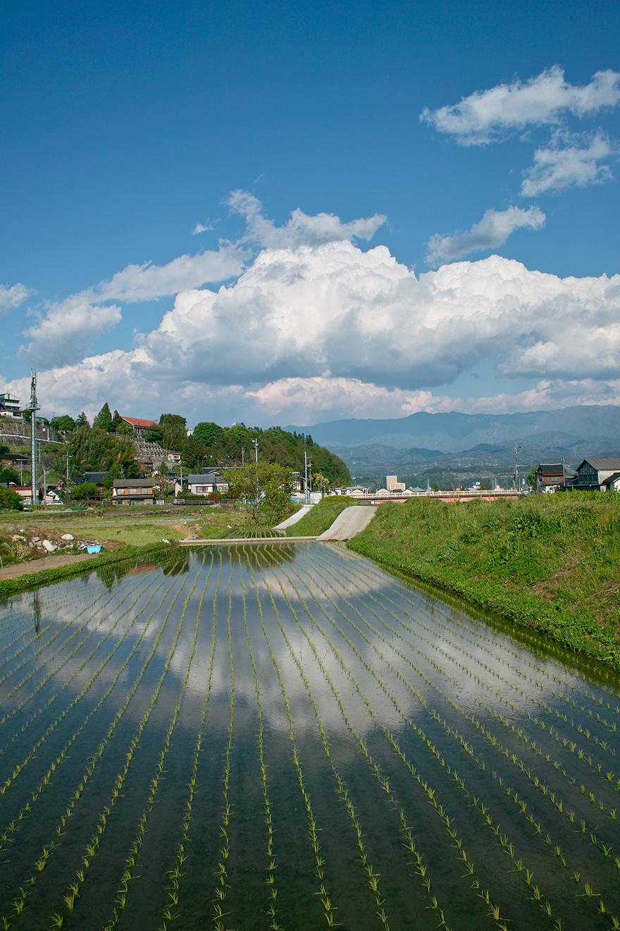 2012年5月10日飯田市松川緑地