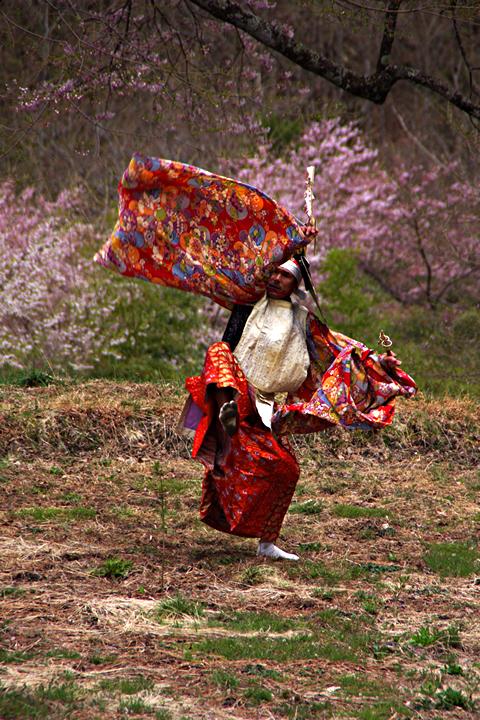 2014年4月20日:阿智村園原「駒つなぎの桜」鶏舞奉納