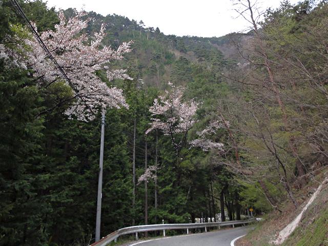 2014年4月24日:長野県道8号線「大平街道」松川ダム付近