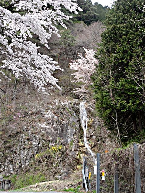 2014年4月24日:長野県道8号線「大平街道」大深澤