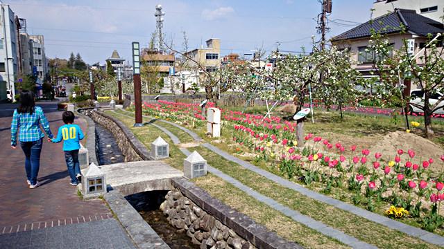 2014年4月26日:飯田市「りんご並木」