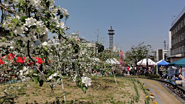 2014年4月27日:「ゆるキャラ天国inりんご並木」